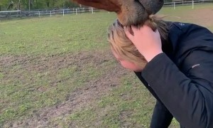 Horse Has Her by the Hair