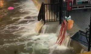 Floods in Chicago have turned the city into a giant river