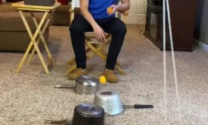 17 Pot, Ping-Pong Ball and Swinging Cup Trick Shot