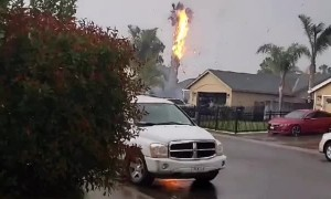 Lightning Sets Palm Tree on Fire