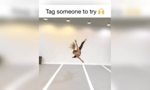 Do you know someone who can do this?