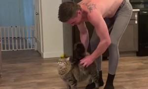 Kitty Demands Firm Pats