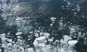 The Mesmerizing Ice of Abraham Lake