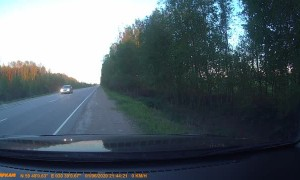 Moose Crossing a Road Gets Hit