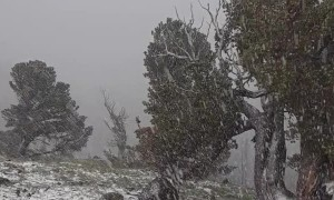 Thunderstorm Brings Down Heavy Snow