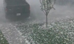 Insane video of tennis ball sized hail in Calgary