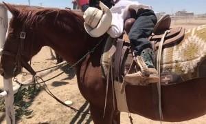 Real Life Rocking Horse Rocks Little Cowboy to Sleep