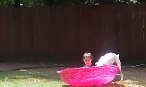 Boxer Pup Plays With Kid in Pool