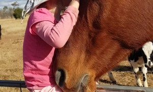3-Year-Old Singing to Horse
