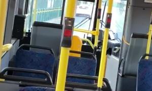 Man Breaks Bus Windows With Roadsigns