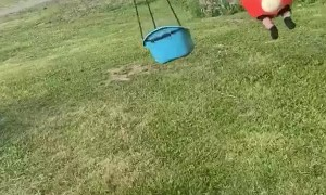 Horse Walker Makes Great Kiddy Swing