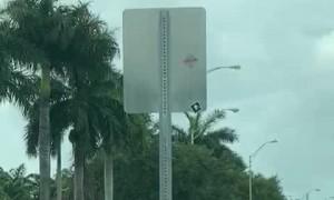 Truck Driver Helps Elderly Woman Cross the Street