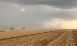 Farmers Don't Take Time Out for Tornado