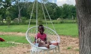 Little boy enjoys hammock swing with his puppy