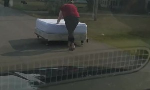 Girl Pushes Newly Bought Bed Down the Road