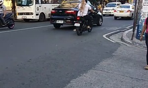 Dog Stands to Ride on Motorcycle