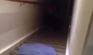 Stair Slide Fail