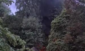 Fire at Rouken Glen park!