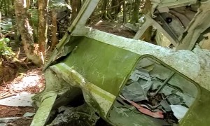 Hiker Finds Plane Wreckage