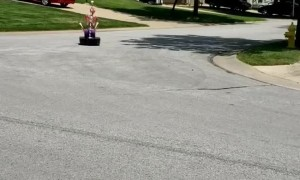 Speedy Skeleton Drives Bumper Car