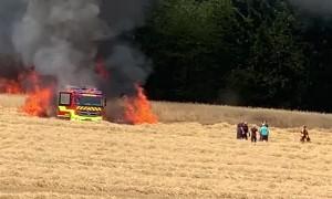 Fire in the Rye Field
