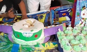 Boy Buries Head into Birthday Cake