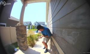 Protective Birds Guarding Nest Swoop at Door Salesman