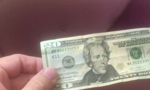 20 Dollar Bill Predicts Covid Masks