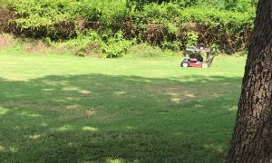Remote Controlled Mower