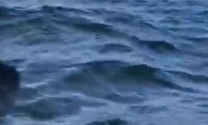 Ship Captain Thrown Overboard by Underwater Collision