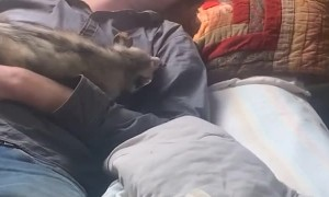 Man Sleeping with a Opossum