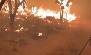 Firefighters fight to put out Dome Fire in Mojave National Preserve