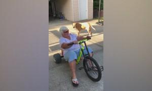 Seniors Gone Wild