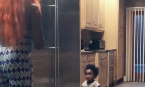 Baby Tries to Close Lady in the Fridge