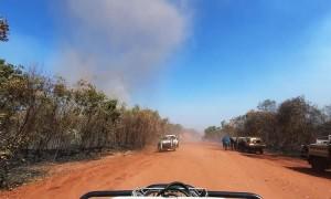 Dust Devil Dorothy Crosses the Road