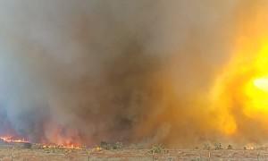 Firenado in Kings Canyon