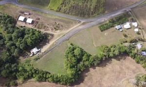Eagle Ambushes Drone Joy Flight