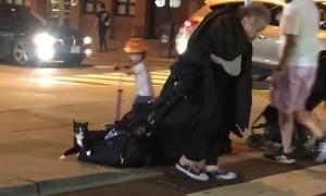 Odd Scene at New York City Crosswalk