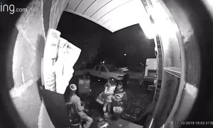 Kids Realize They are Busted Taking Handfuls of Halloween Candy