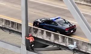 Engineer saves dog on bridge 120 feet over Mississippi River