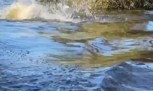 Boat Wake Rocks Paddle Board Rider
