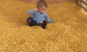 Kid Confused by Corn Kernels at Bottom of Slide