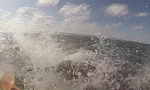 Bottlenose Dolphin Leaps over Kayaker
