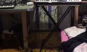Cat Playing Horrifying Music on Synthesizer