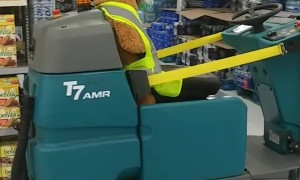 Beary Careful Zamboni Driver