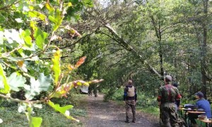 Two Trees Fall During Airsoft Event
