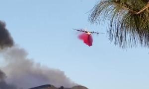 Plane drops fire retardant over Chino Hills State Spark in California