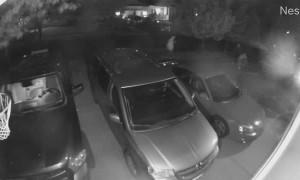 Thief Chose Wrong Car