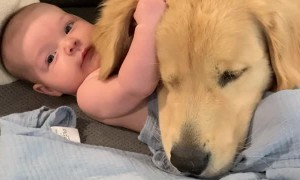 Baby and Dog Cuddling on the Couch