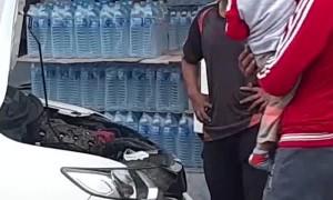 Large Snake Discovered Under Car Hood